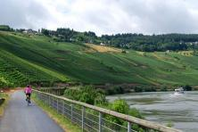 Cycling along Moselle with MS Flora